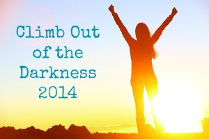 Climb Out of the Darkness 2014