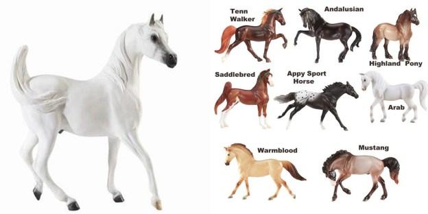 تزاوج الخيول العربية الأصيلة