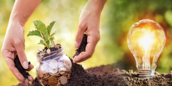 أفكار مشاريع زراعية مربحة وناجحة