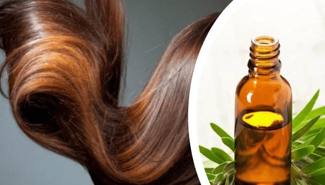 افضل زيوت الشعر شجرة الشاي