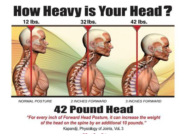 ears over shoulders posture