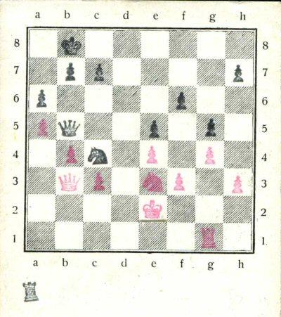 schaken-4-344-400p.jpg
