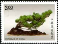 bonsai_934-190p.jpg