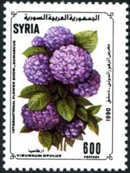 viburnum-opulus-891-190p.jpg