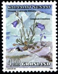 campanula-4-kr-874-195p.jpg