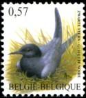 057-vogels-2002-921-125p.jpg