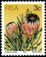 3-c-1977-088.jpg