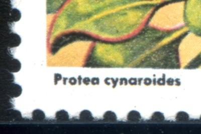5-c-1977-091.jpg