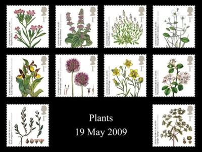 bedreigde-planten2