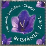 flora_roemenie_2009_poststamp_prachtklokje