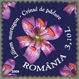 flora_roemenie_2009_poststamp_turkse_lelie