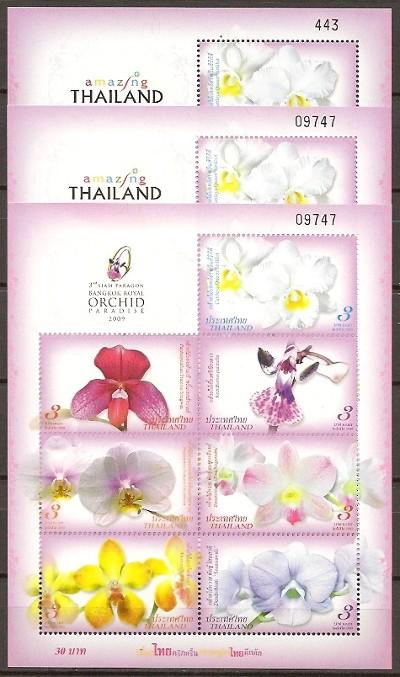 thailand_bloem_orchidee_blok_tentoonstelling