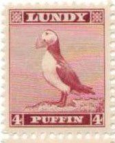 lundy-puffin-4