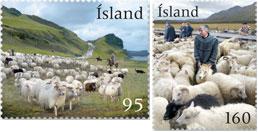 schapenhoeden-ijsland-2009