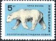 3 ijsbeer Bulgarije 1966