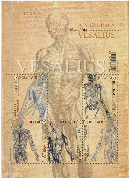 22 april Andreas Vesalius