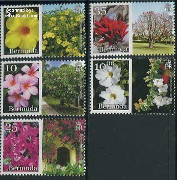 Flowers Bermuda 2014 bdp31402