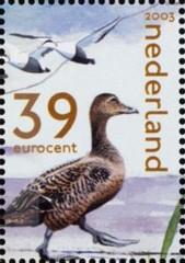 NVPH 2170c - Het Nederlandse Wad - eidereenden