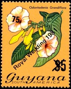 Guyana Mi 678