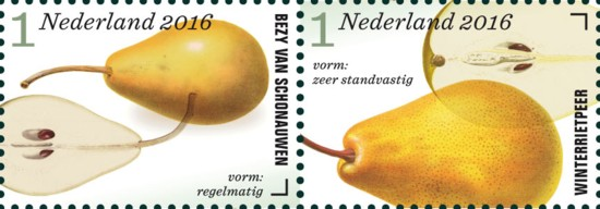 appel-en-perenrassen-in-nederland-rij-2