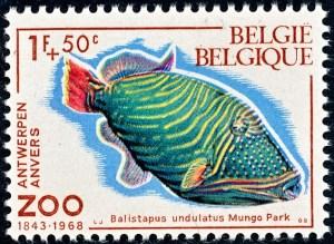 belgie-1470