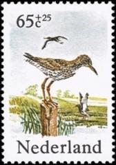 NVPH 1303 - Zomerzegels - Weidevogels - tureluur