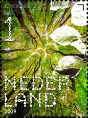 Beleef de natuur - bomen & bladeren - 2. zomerlinde