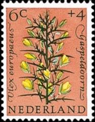 NVPH 739 - Zomerzegel 1960 - gaspeldoorn