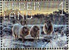 Postzegel Beleef de natuur Dwingelderveld