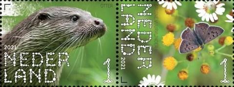 Beleef de natuur - De Onlanden - otter en bruine vuurvlinder