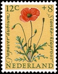 NVPH 741 - Zomerzegel 1960 - klaproos