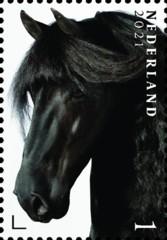 Nederlandse paardenrassen [1] - Izaak