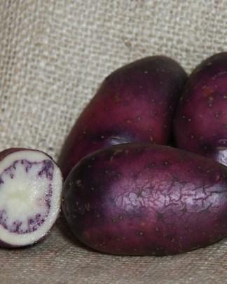 Shetland Black Seed Potatoes