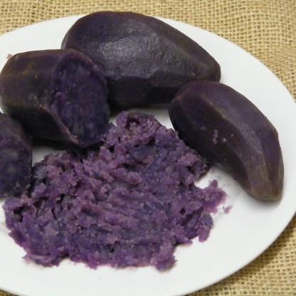 Blue Flesh Seed Potatoes