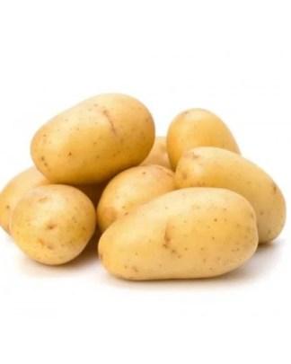 Ratte Seed Potato