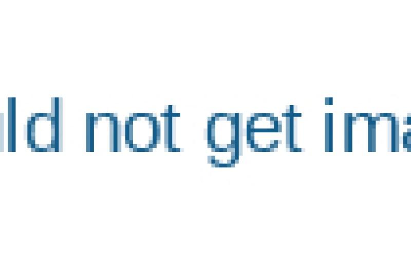 Cassava-Processing-Machine-for-Sale