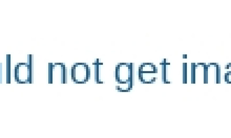 Screw-Feeding-Type-Potato-Washing-Peeling-Machine-for-Sale-China-Romiter