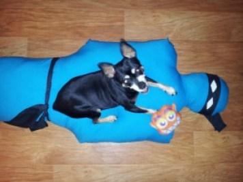 Buy Now: Ninja Pillow
