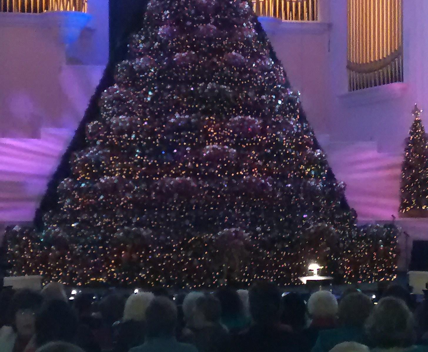 Living Christmas tree En Potencial Millonario con Felix A. Montelara el Mentor Millonario