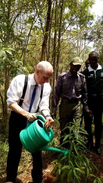 Ambassador Robert Godec waters one of the trees he has planted at Karura