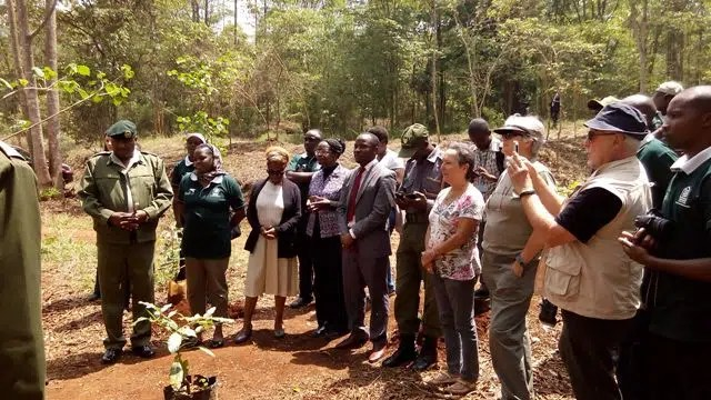 Members of the Green Belt Movement, Friends of Karura Forest, and other Tree lovers gather to celebrate earth day.