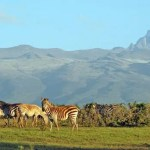 Travel: This year experience Kenya differently