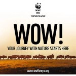 WWF Kenya Transitions Into NGO – One Giant Leap For Kenya's Conservation Efforts