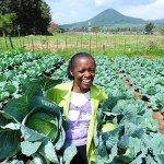 The Agricultural Sector: Why Modernization Is The Way For The Future