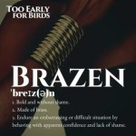 Event Review: Too Early For Birds Brazen Edition - Telling The Stories Of Forgotten Kenyan Women Heroines