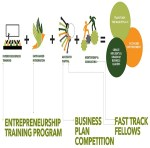 Why I Would Recommend The Sinapis Entrepreneurship Course To Those Looking To Take Their Businesses To The Next Level