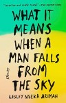 Book Review: What It Means When A Man Falls From The Sky By Lesley Nneka Arimah