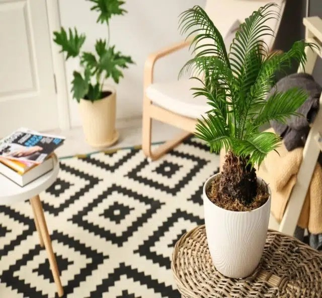 Check Out These 5 Environmentally Friendly Home Decor Ideas