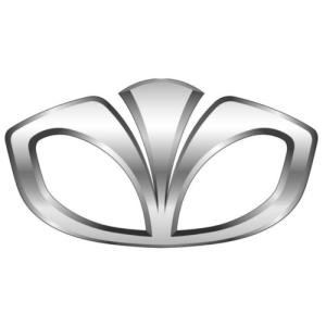 Daewoo Logo Auto Potgieter