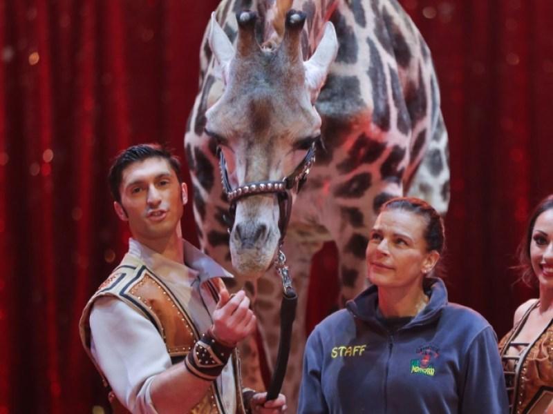 Stéphanie de Monaco: «Non, tous les animaux du cirque ne sont pas malheureux !»